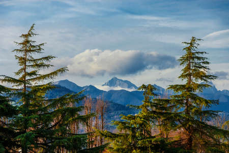 Mountains, woods and clouds above. View of Apennine between two firs