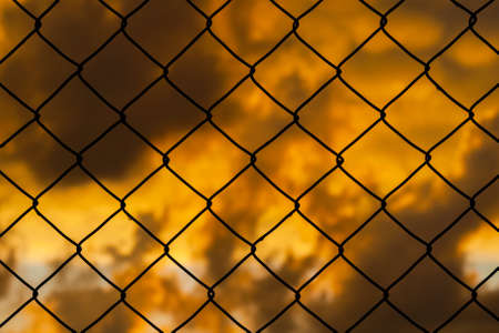 Grid with blurred golden sunset sky behind as background