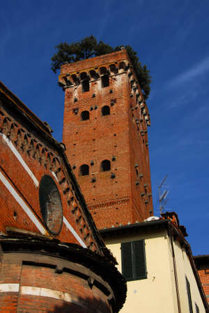 The famous and characteristic medieval Guinigi Tower with oak trees at the top, erected in the 14th century in the historic center of Lucca and now a city landmark