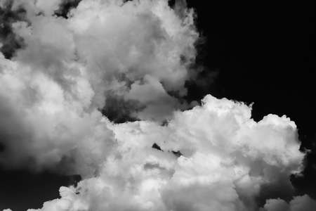 Dark sky with birds flying among dramatic clouds as background (Black and White)
