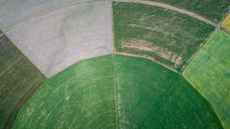 circle cultivation fields seen from the drone in new zealand 版權商用圖片 - 95072811