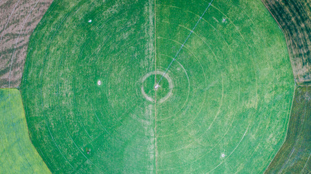 circle cultivation fields seen from the drone in new zealand Archivio Fotografico - 95085729