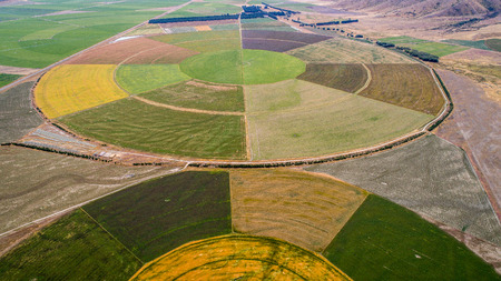 circle cultivation fields seen from the drone in new zealand Archivio Fotografico - 95088500