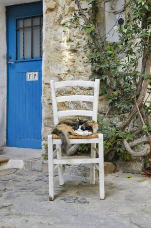 The cat sleeps on the chair in a beautiful alley with a blue door 版權商用圖片 - 128917701