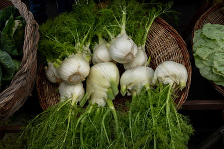 A lot of bunches of fennel in a basket Zdjęcie Seryjne