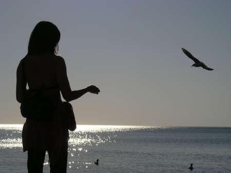 Silhouette Girl over sunset  Фото со стока