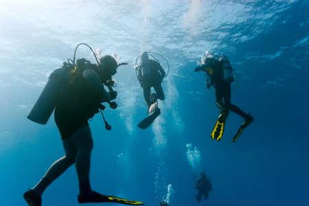 picada: Buzos en el azul del mar Foto de archivo