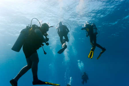 Divers in the blue sea Stock Photo