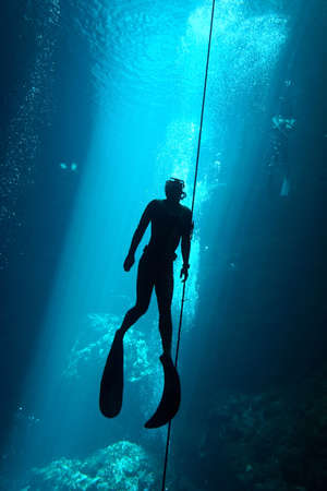 Freediver  in the cenote Stock Photo