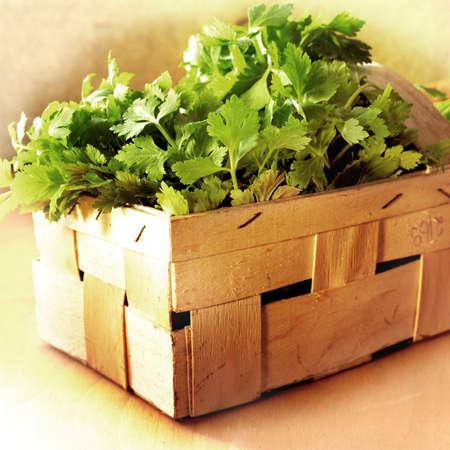 spicey: Prezzemolo fresco in una cassa di legno di mercato