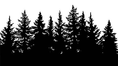 silhouette of fir trees, forest landscape. On white background Illustration