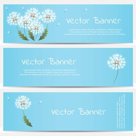 blowball: Dandelion banner on blue background. Vector illustration Illustration