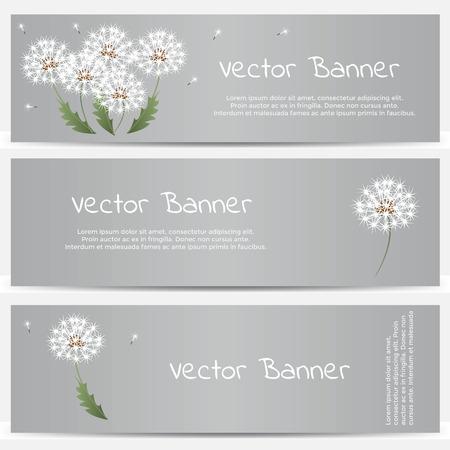 horizon over land: Dandelion banner on gray background. Vector illustration