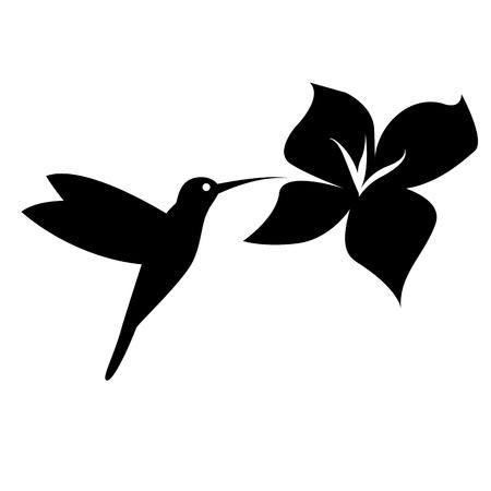 Colibrí negro silueta sobre fondo blanco. Ilustración vectorial EPS8 Foto de archivo - 45516791