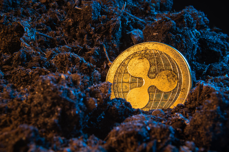 Mining crypto currency - Ripple coin. Online money coin in the dirt ground. Digital currency, block chain market, online business