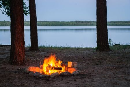 View of burning camp fire by the lake at twilight surrounded by tree silhouettes. Burning fire place by the water surrounded by trees in the forest. Spending the night in wilderness