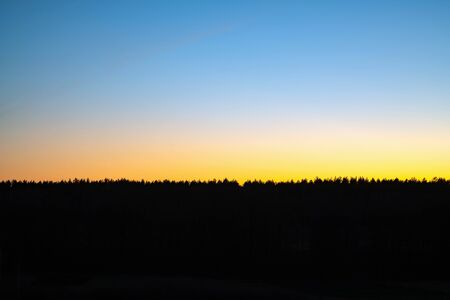 Colorful sunset sky over forest horizon. Natural dawn twilight. Nobody. Space for text.