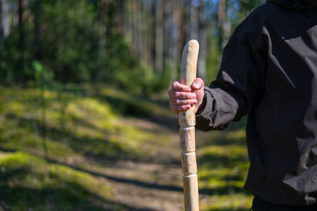 Close up of man holding a walking stick in the forest. Hand made wooden walking pole in hand of walker on a sunny day