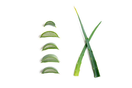 Aloe vera twigs and plant slices isolated on white background Imagens
