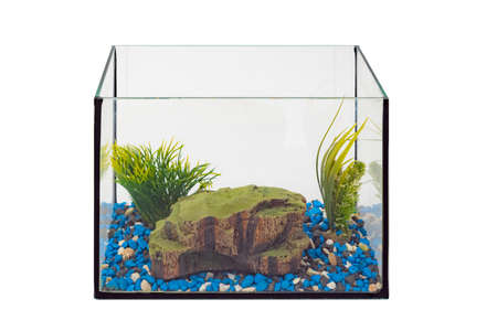 Fish tank aquarium with no water and fish on white background. Empty fishbowl. Nobody