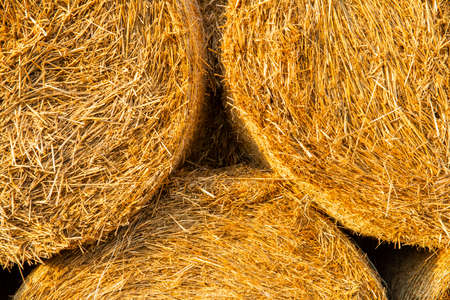 Background close up to natural bale of hay