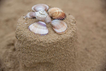 Sand cake decorated with seashells. Vacation concept