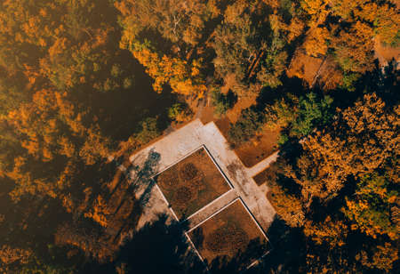 Beautiful drone picture from above of amazing colorful autumn trees