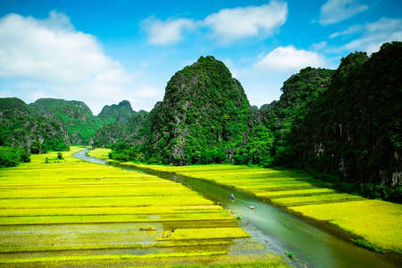 ngo: Ngo Dong river and rice fields in NinhBinh, vietnam landscapes Stock Photo
