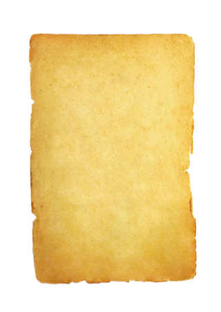 papyrus photo