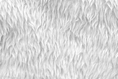 pelaje blanco