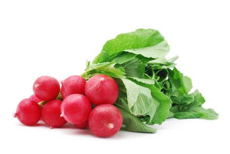 fresh radish on white background photo