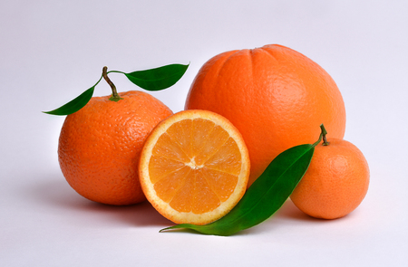 Fresh and juicy oranges in different size on white background