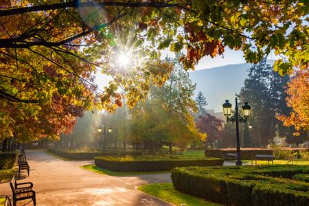 National park of Brasov in autumn season, Romania