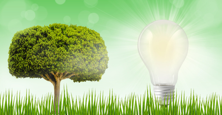 White bulb on a field outdoor, ecology concept of saving electric energy