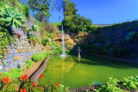 Beautiful lake surrounded by flowers in botanical garden of  Madeira island, Portugal