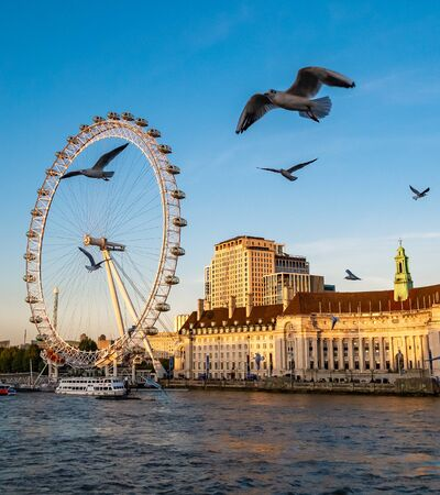 London Eye, the famous landmark of London in sunset light, England