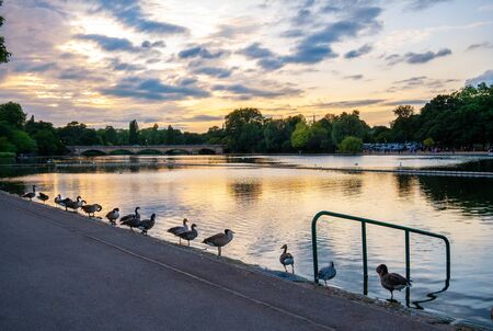 Panoramic view of the central lake inside the main park in Notting Hill Gate, with the sky at sunset reflected in water, London - England Standard-Bild