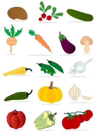 slow food: Set di verdure dettagliate su sfondo bianco Vettoriali