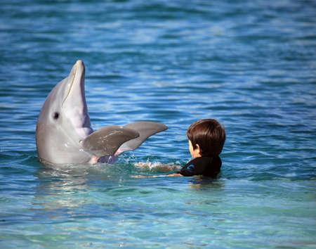 alternative therapy: Child playing with a cute dolphin in the blue water