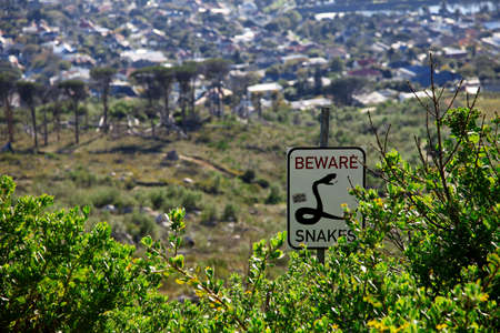 beware: Beware snakes sign post in the bushes of Capetown, Saouth Africa