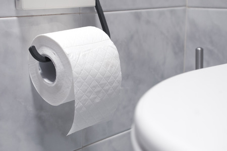 Roll of toilet paper in a tiled bathroom Stock Photo