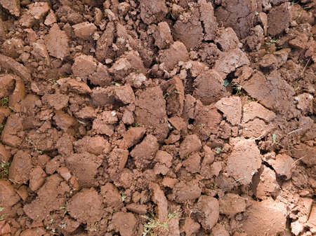Detail of clayey soil excavated in preparation for sowing vegetables 스톡 콘텐츠