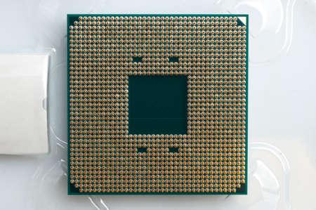 Gold metal pin on a computer processor (cpu)