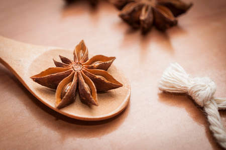 Star anise seeds and fruits on wooden spoon
