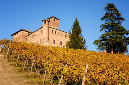 Vineyards and castle of Grinzane Cavour, in the hills of Langhe (Piedmont, Italy). The castle was the home of Camillo Benso, count of Cavour