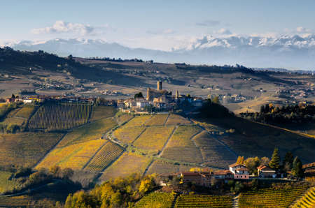 Vineyards of Langhe (Piedmont, Italy): view of Castiglione Falletto, medieval village, with mountains in the background Stock Photo