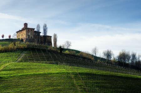 Castello della Volta, medieval castle in the vineyards of Langhe, near Barolo (Piedmont, Italy) Stock Photo