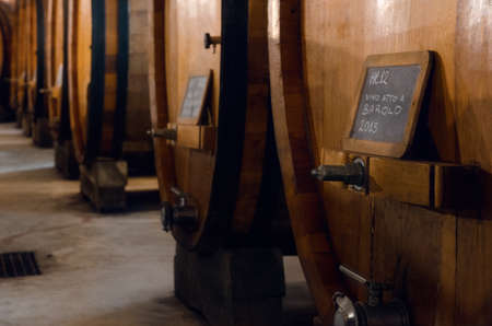 Historic cellar with 12 hectolitres slavonian oak wooden barrels for the the aging of wine suitable for yielding a barolo wine, vintage 2015. The barolo is one of the best variety of italian wine