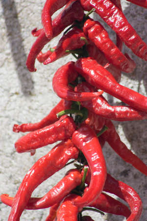 peppers: red peppers