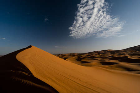 orange desert dunes in morning light photo